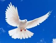 Крещение Святым Духом