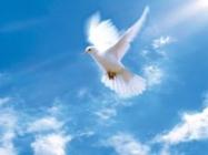 Правда Духа Святого