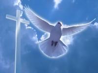 Дух Святой обличает мир