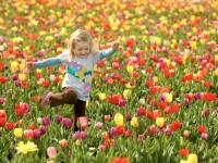 Весна души
